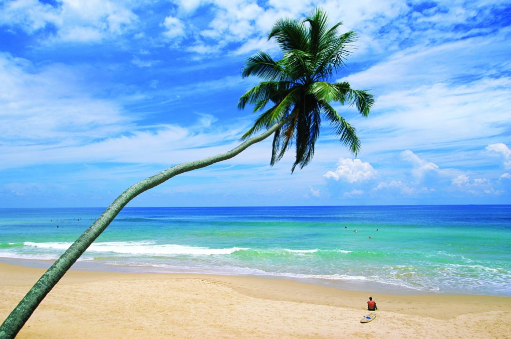 ca. 2005, Sri Lanka --- Palm tree and surfer, Hikkaduwa beach, island of Sri Lanka, Indian Ocean, Asia --- Image by © Yadid Levy/Robert Harding World Imagery/Corbis